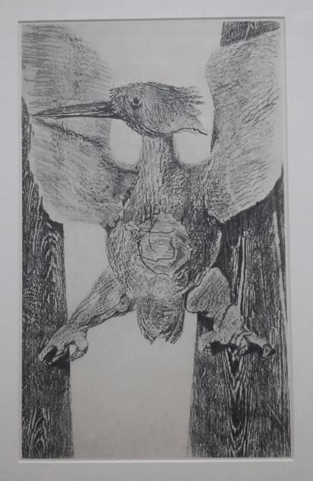 Ernst-bird