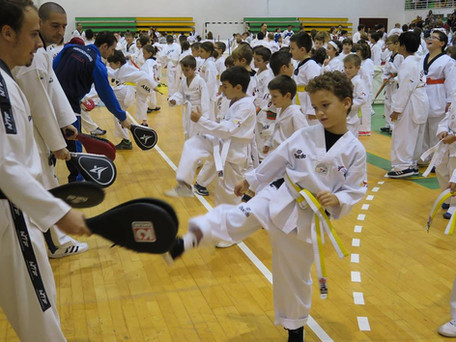 II Encuentro Del Campo de Gibraltar de Taekwondo Olympico - Los Barrios November 2016