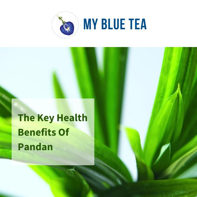 Key Health Benefits of Pandan