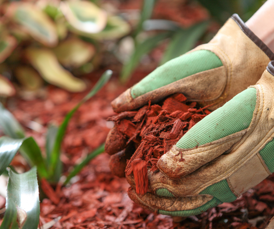 Checkout our mulch recipe | Accomplished Tree Management