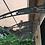 Thumbnail: PC 1500 x 7000
