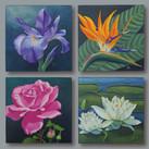"""""""Blütenportraits"""" C 40 x 40 cm"""