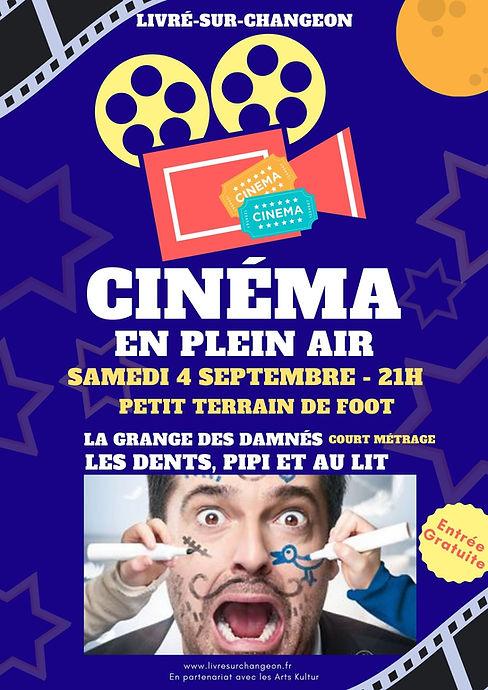 Affiche Cinéma plein air 2021.jpg