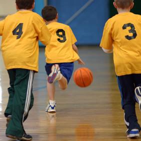 Jerome Tigers Boys Basketball Camp