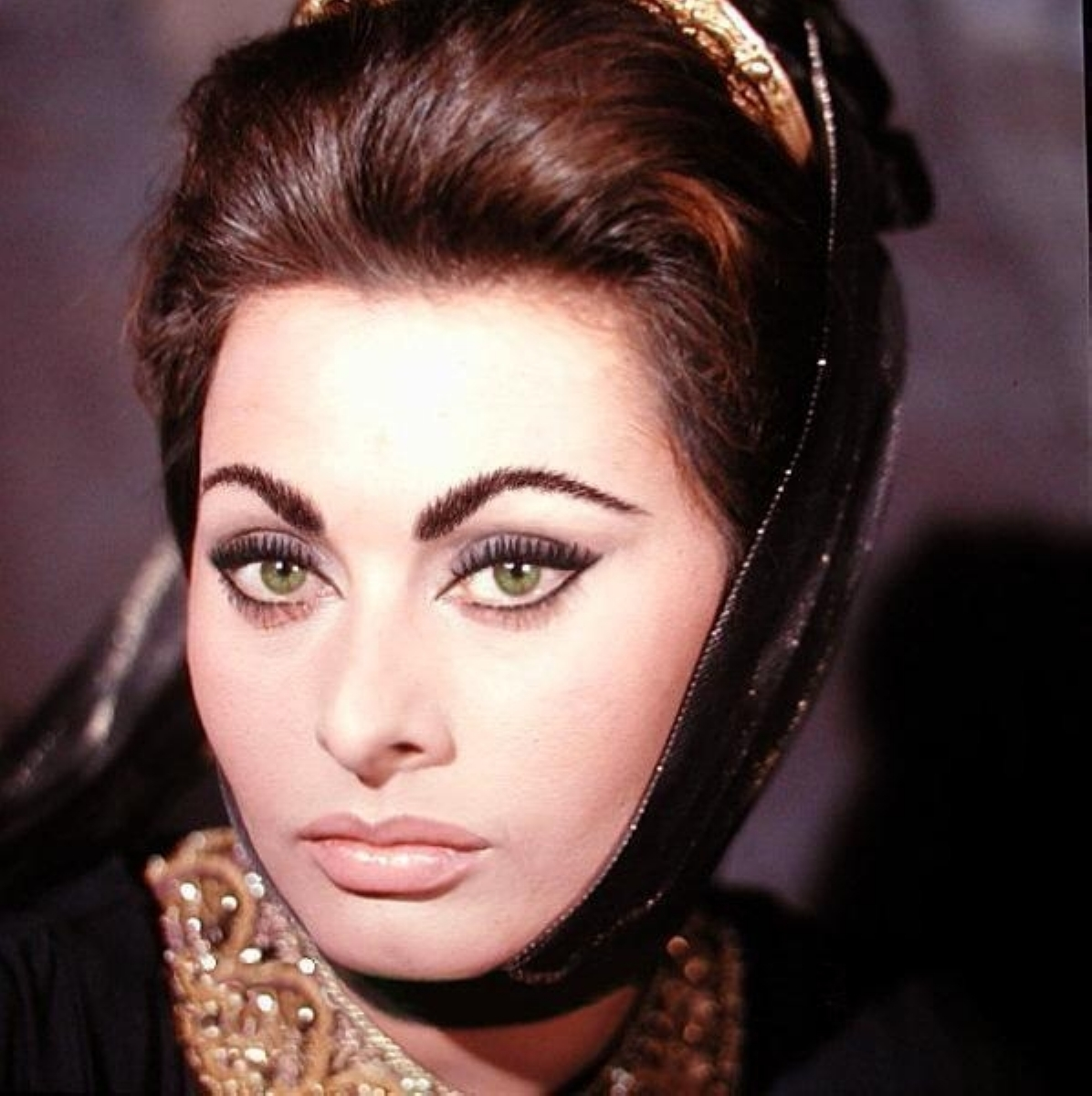 Brilliant Sophia Loren Glamorama Makeup Wedding And Prom Hair And Makeup Hairstyles For Women Draintrainus