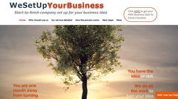 We Set Up Your Business