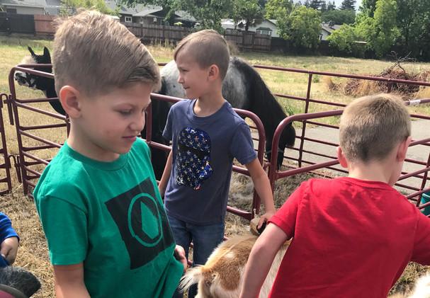 Petting Farm Visit 2.JPG