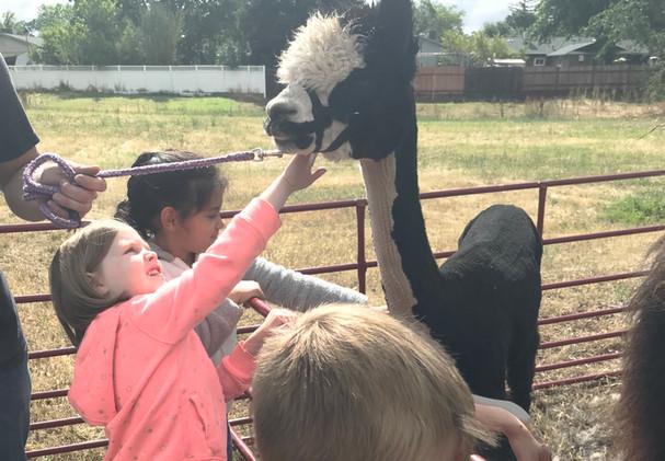 Petting Farm Visit.JPG