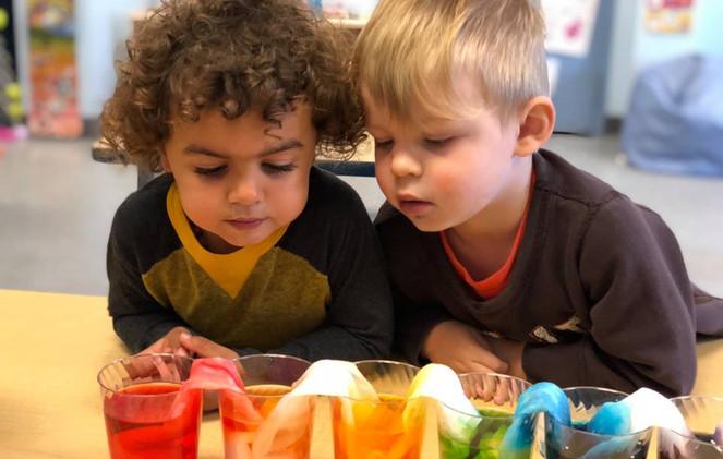 Preschool Prep-Science