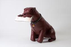 annamania_design_boxer_leatherdog