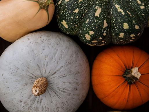 Pumpkin or Squash?
