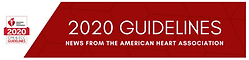 2020 Guidelines Logo - 2.png