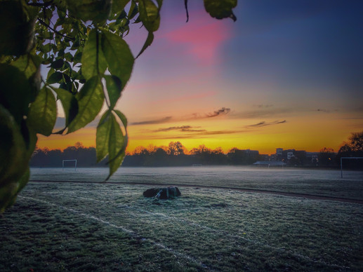Frosty Early Morning 2019