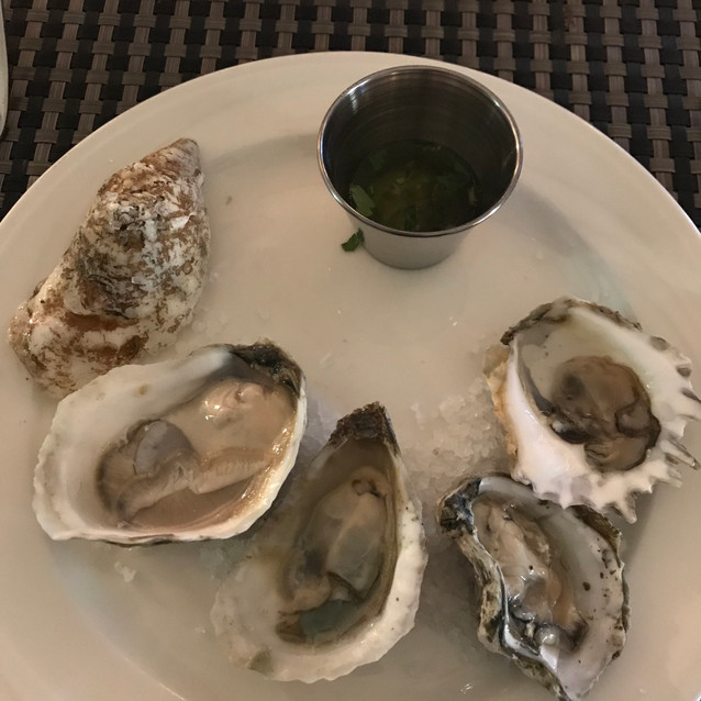 1st Course Oyster Dinner