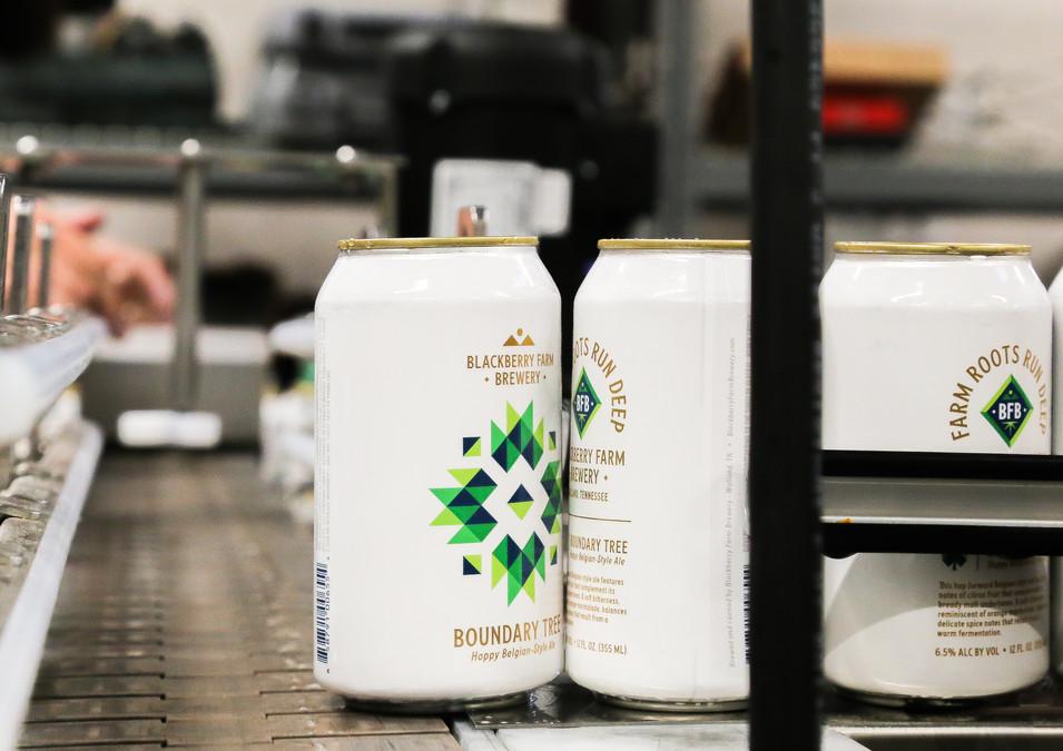 blackberry brewery cans.jpg