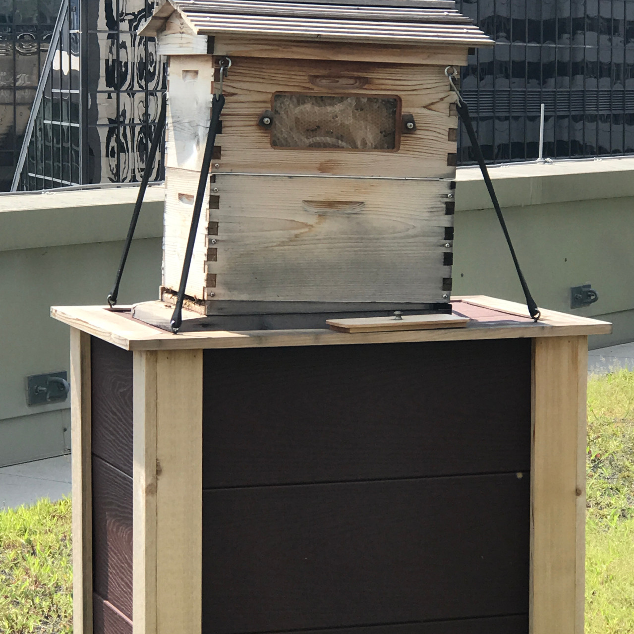 Rooftop Beehives Ritz-Carlton