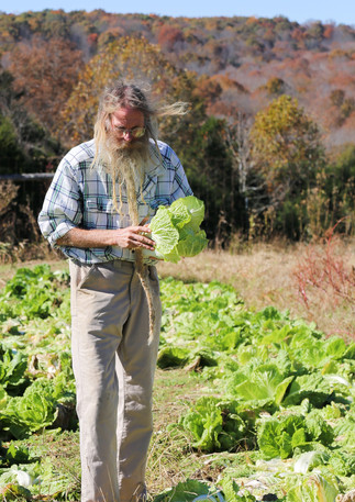 farmer w lettuce.jpg