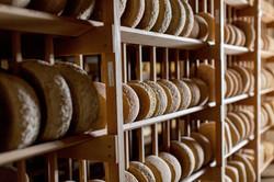 LIght cheese wall