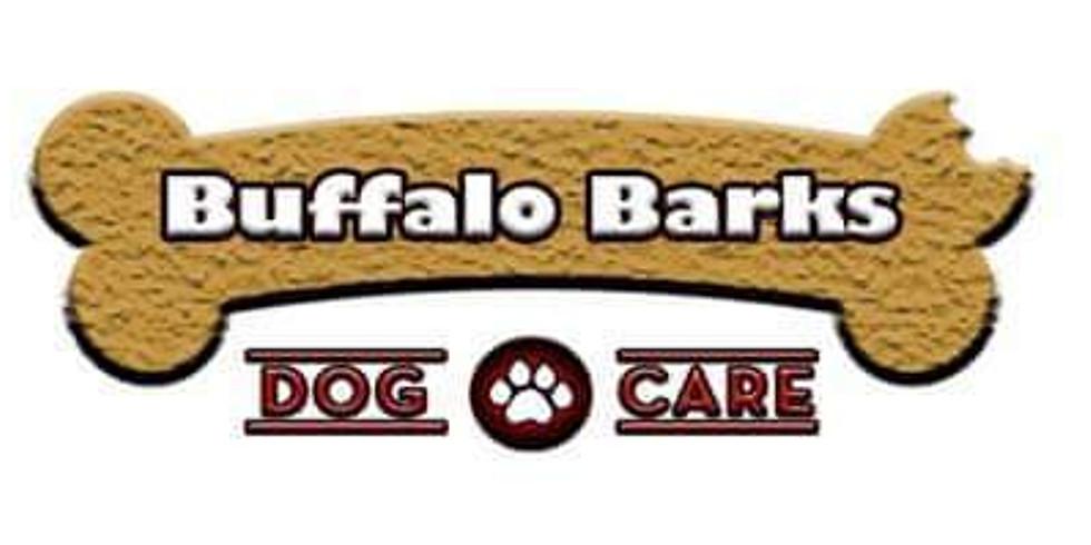 Buffalo Barks 5th Anniversary Celebration