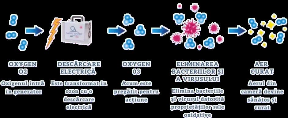 generator-ozon-schema-sanity.png