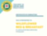 NMSafeCertified_Logo_RGB2.png