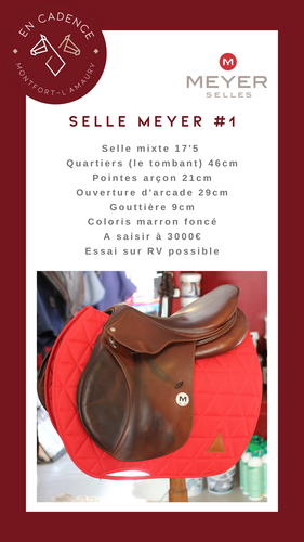 Selle-Meyer-1-1.png