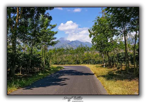 Sur la route vers le Kawah Ijen