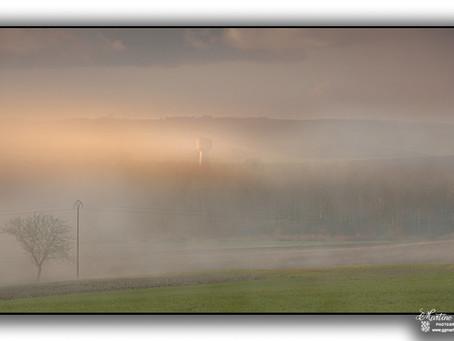 Brouillard dans la campagne marnaise
