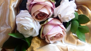 Pink Peonies and Ivory Roses a Perfect Combination for a Brides Bouquet