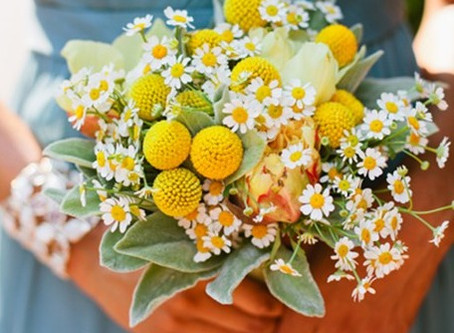 PLANNING YOUR WEDDING - Favourite Filler Flowers (Part 2)