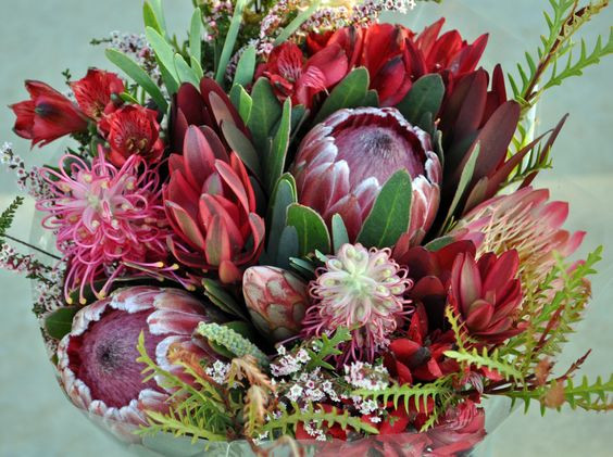 Pinterest image showing a Brides bouquet containing the bottle brush like grevillea flower and its foliage
