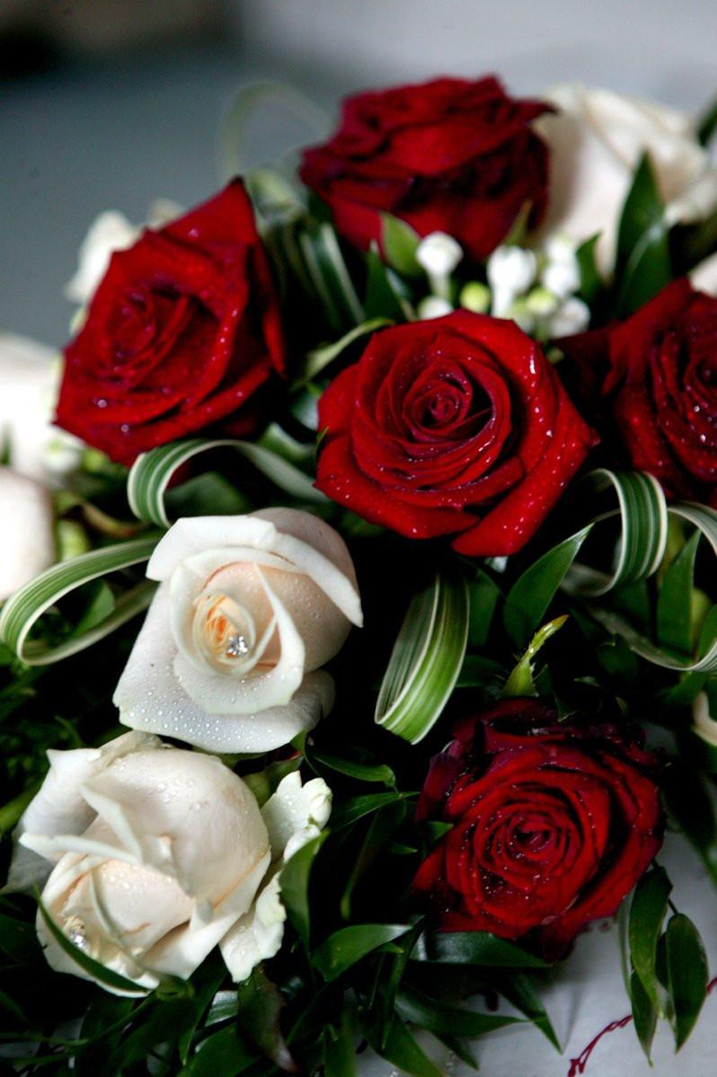 Image courtesy of freeimages.com