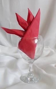 Bird of Paradis Napkin Fold in wine glass