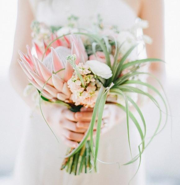 www.brides.com/photos/king-protea-bouquet-with-wispy-air-plants