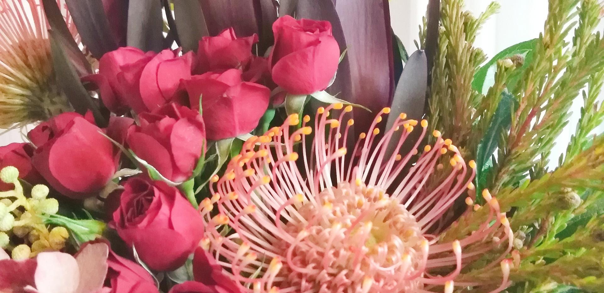 Pincushion Protea Display