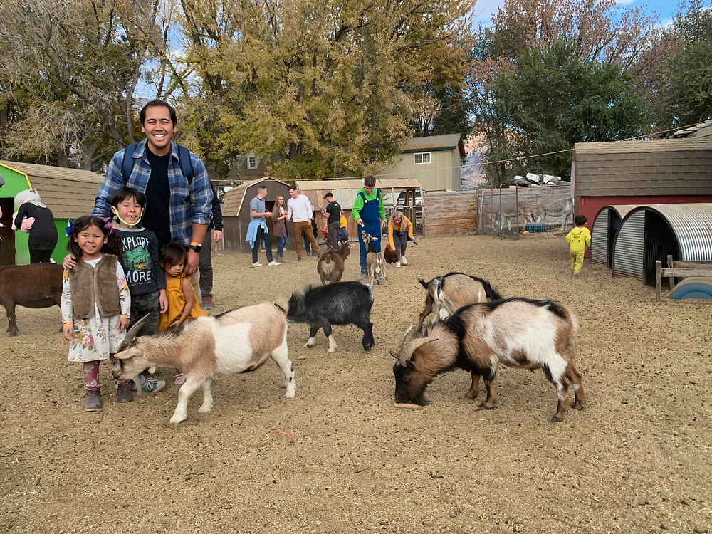 Picture of dad and children at Hee Haw Farms in Pleasant Grove, Utah surrounded by farm animals including goats and pigs.