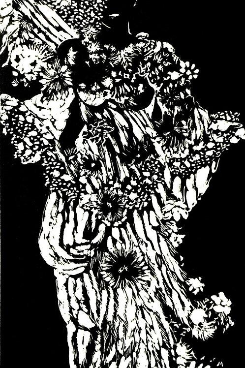 Emily Dickinson Blanche Incandescente