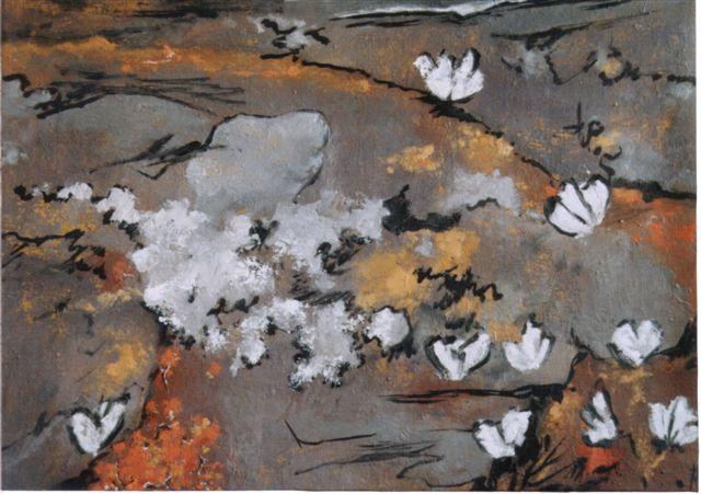 Les papillons blanc