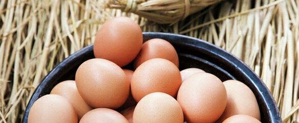 유정란 Free-range, non-antibiotics Eggs