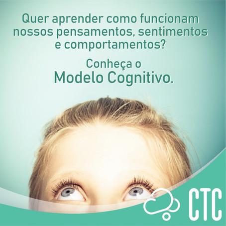 O Modelo Cognitivo