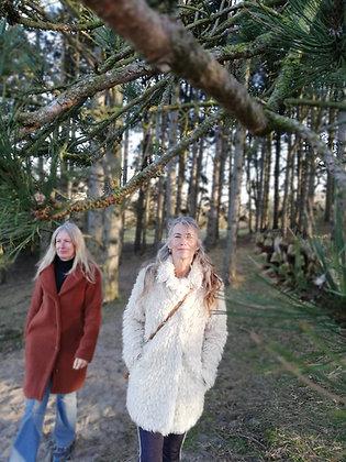 Ervaar het bos (een zintuigelijke wandeling door het bos)