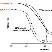 Oestrogeendominantie.png