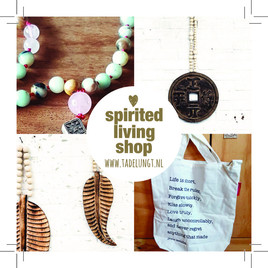 the why of my spirited living shop