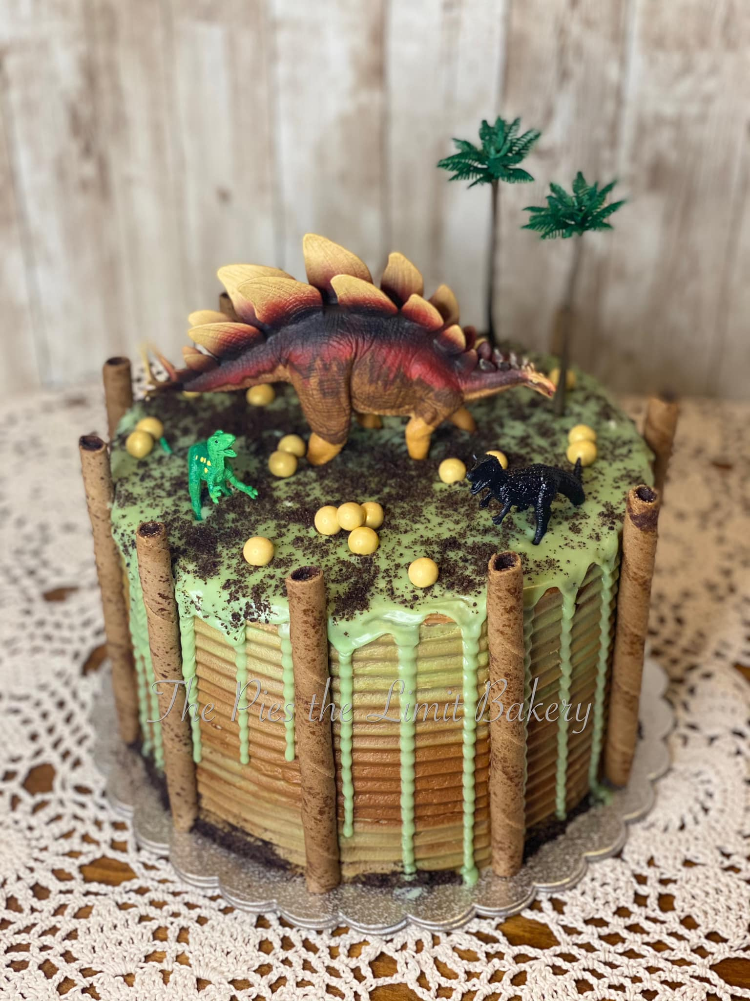 dinasaur cake.jpg