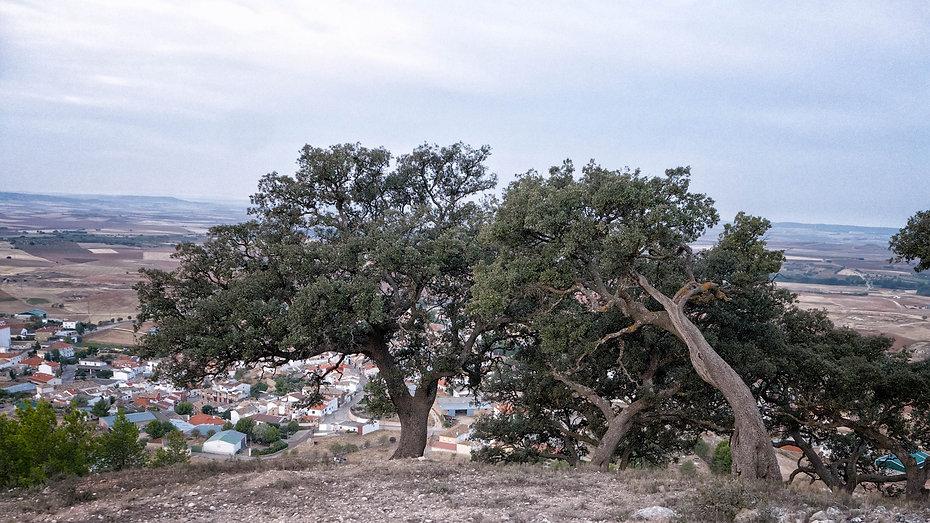 Desde las Carrasquillas se ve Torrejoncillo del Rey (Cuenca) y el paisaje manchego. Photoperiplo estuvo allí fotografiando, nos acompañas.