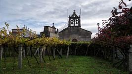 Iglesia y cementerio rodeados de impresionantes viñedos
