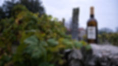 Casa y bodega de María Bargiela en un entorno ideal para pasar unos días en Salvaterra de Miño (Pontevedra). Photoperiplo estuvo allí fotografiando entre viñedos e historia.