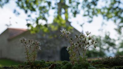 Ermita de la Virxe do Monte...