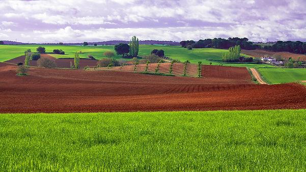 Qué ver en la Manchuela Conquense, Photoperiplo estuvo allí en Buenache de Alarcón (Cuenca) Castilla la Mancha fotografiando estos paisajes porque nos encanta viajar y fotografiar.