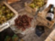 """Finca la Caseta de Uvas Cabrera en Benissa, Marina Alta (Alicante) España. Uvas Cabrera es un gran productor de uva Moscatel de Alejandría y Photopepriplo hizo una cuantas fotografias de la presentación de su primer vino """"Ximo Cabrera"""" 2016"""